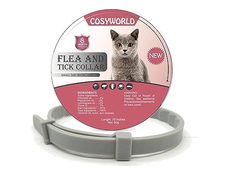 Amazon.com: COSYWORLD Collar para pulgas y garrapatas para ...