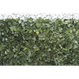 VERDELOOK Siepe Artificiale Sempreverde® Point 1,5x3, Foglia edera, Decorazioni Giardino