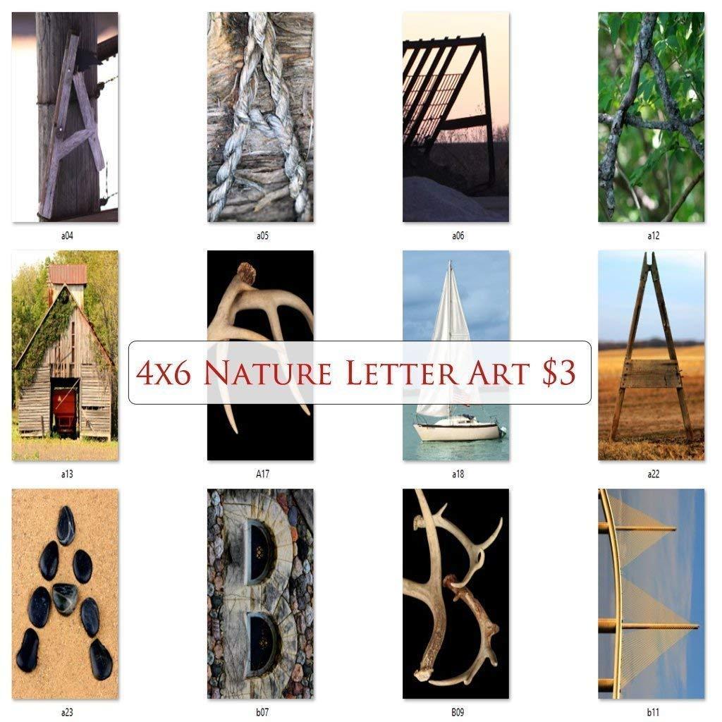 Letter Art Photos by NameArt. 4x6 Letter Alphabet Photos for DIY Name Art Signs Custom Art Gifts.