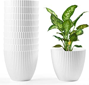HOMENOTE 6 Inch Plant Pots, 10pcs White Plastic Planter Indoor Plant Pots Modern Decorative Small Pots for Plants, Flowers, Herbs, Cactus with Drainage Hole and Plug