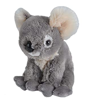 Wild Republic Europe - Peluche Koala (10986)