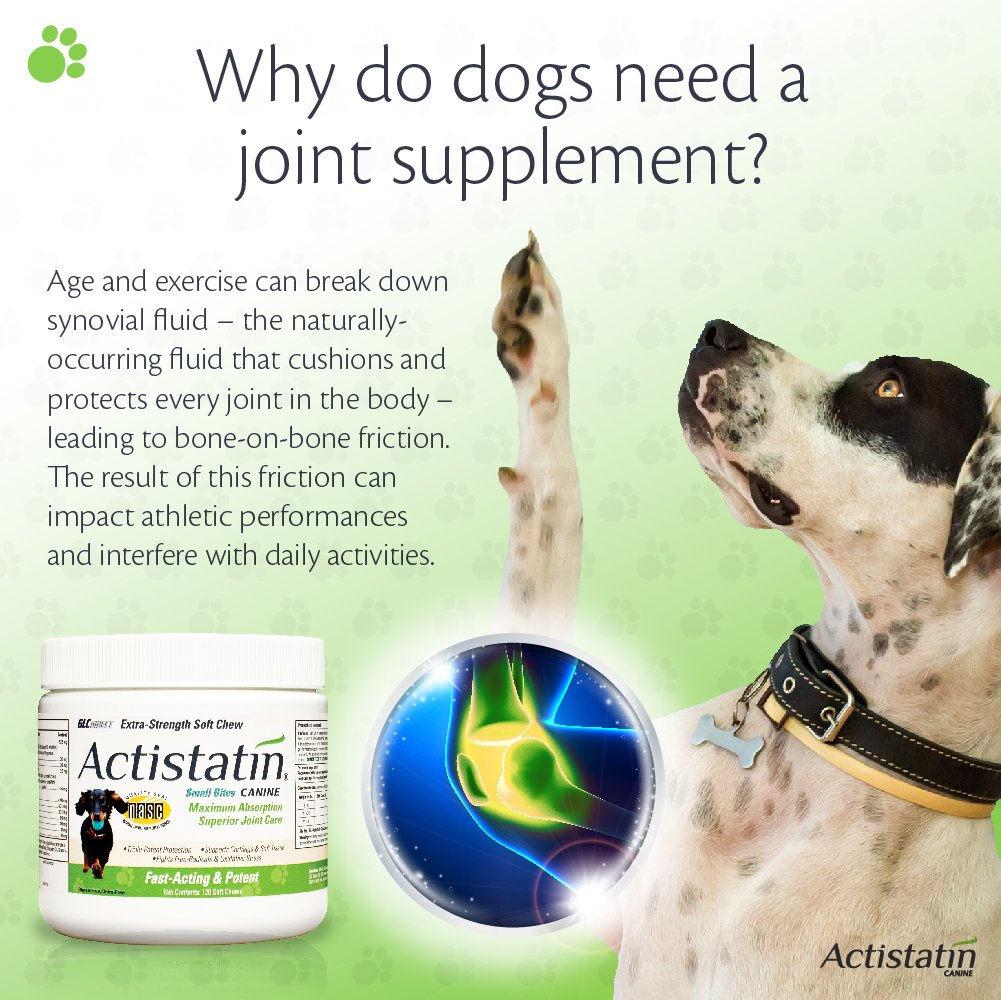 Actistatin Canine Small Dog Soft Chews, 120ct – Patented Extra-Strength Joint, Cartilage, Soft Tissue Supplement: Glucosamine, Chondroitin, Manganese, MSM, L-Carnitine – High Absorption, Fast Results by Actistatin (Image #4)