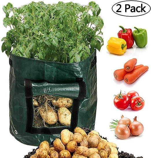 Scoolr - Bolsa para plantar patatas, 2 paquetes de bolsas de ...