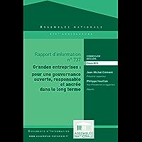 Rapport d'information sur la transparence de la gouvernance des grandes entreprises