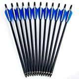 """M.A.K® Hunting Archery Carbon Arrow 20"""" Crossbow Bolts Arrow With 4"""" vanes Feather and Replaced Arrowhead/Tip 12PC"""