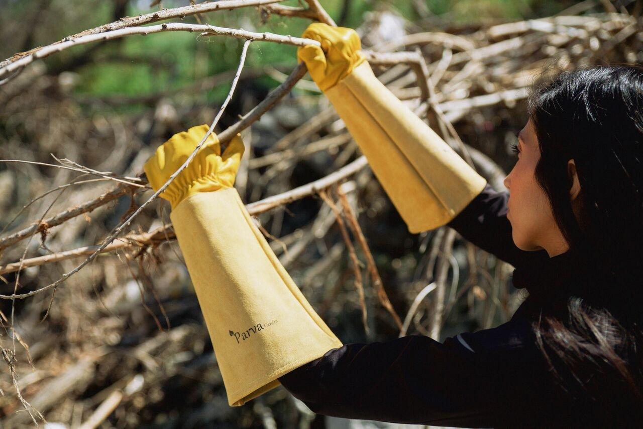 Amazon.com: Guantes de jardinería para rosas a prueba de espinas – Guantes de jardinería para hombre y mujer – Guantes para cactus, Guantes para vides de ...