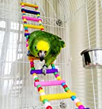 Keersi divertenti giocattoli in legno, motivo: pappagallo ara African Greys pappagalli Kakariki a criceto Rat Crawling-Bridge, motivo: gabbia