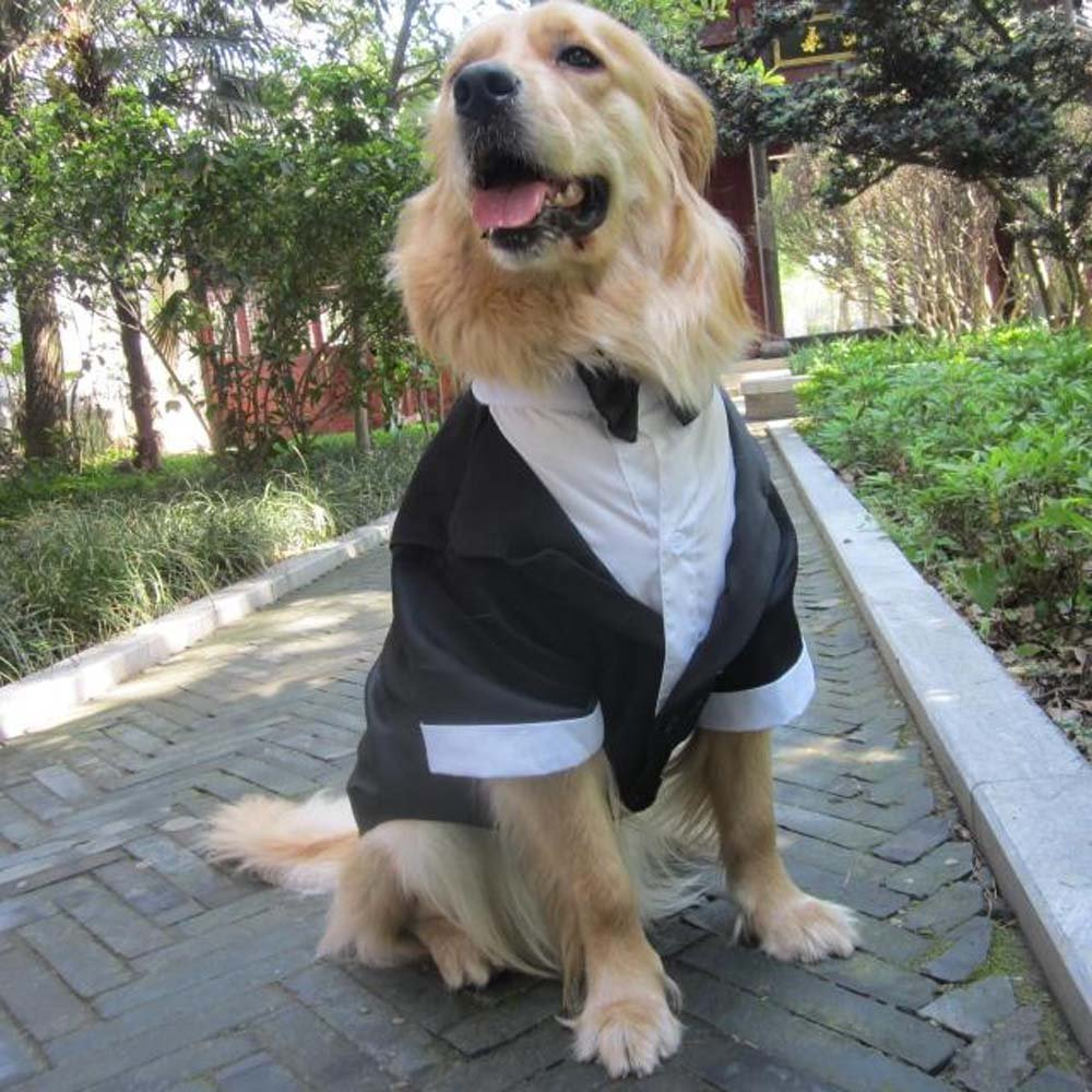 Evursua Large Dog Tuxedo Wedding Party Suit,Dog Costumes Large Dogs Golden Retriever Samo Bulldogs,Gentleman Dog Attire Bowite (black, XL) by Evursua (Image #2)