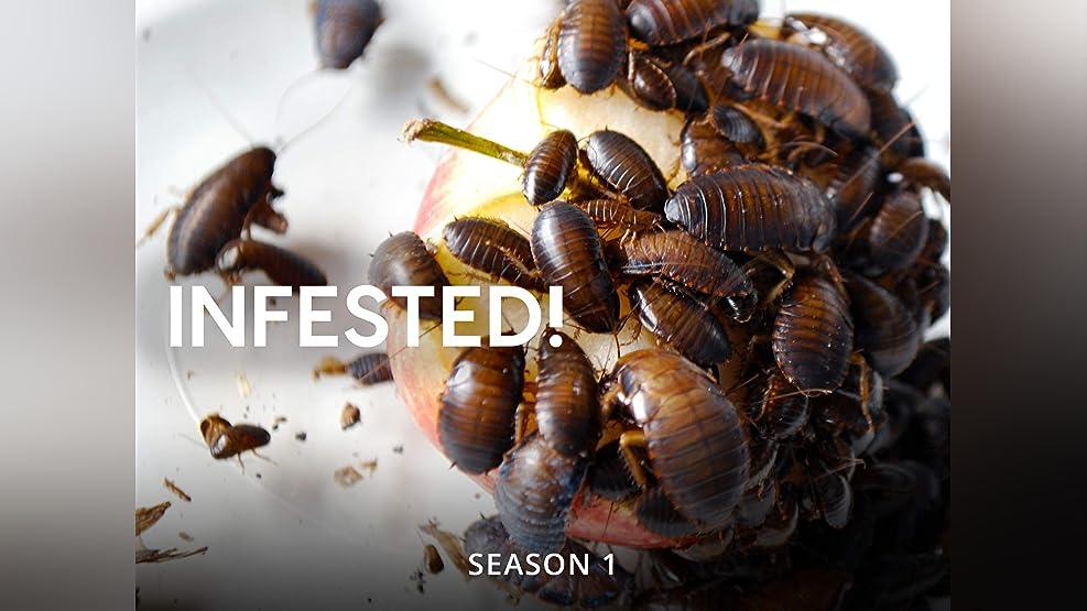 Infested! - Season 1