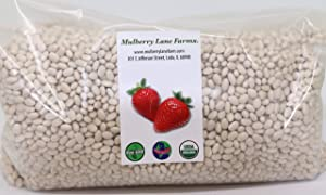 Navy Beans 5 Pounds USDA Certified Organic, Non-GMO Bulk, Product of USA, Mulberry Lane Farms