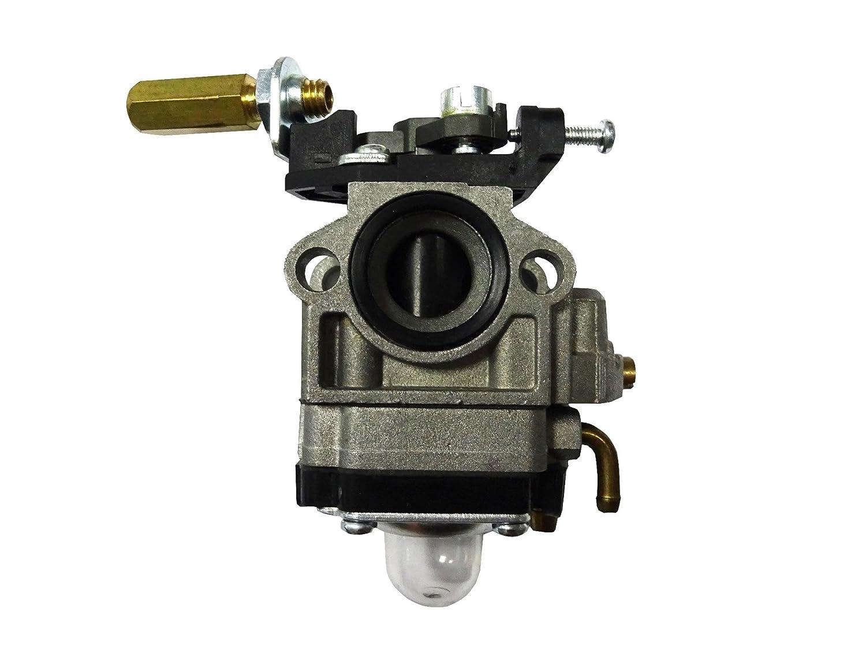 Carburador para BG330 bg420 desbrozadora: Amazon.es: Jardín