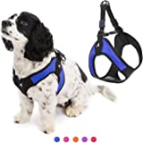 Gooby Dog Harness - Escape Free Easy Fit Patented Step-in Small Dog Harness - Perfect on The Go - No Pull Harness for…