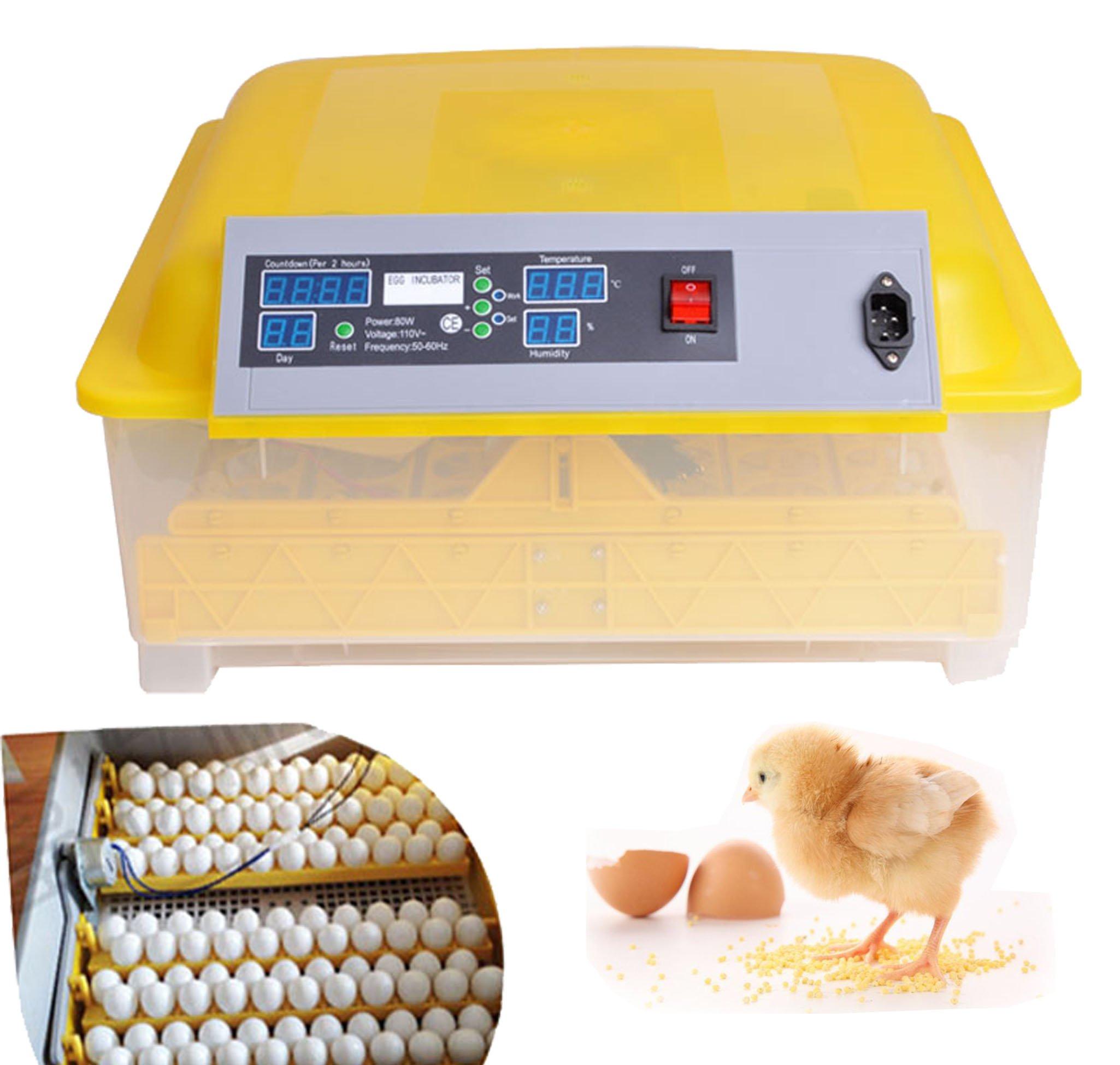 Oanon 48 Egg Incubator, Automatic 48 Digital Egg Hatcher Turning Temperature Control, Poultry Auto-Turning Egg Incubator Poultry Hatcher for Chickens Ducks Birds[US Plug]