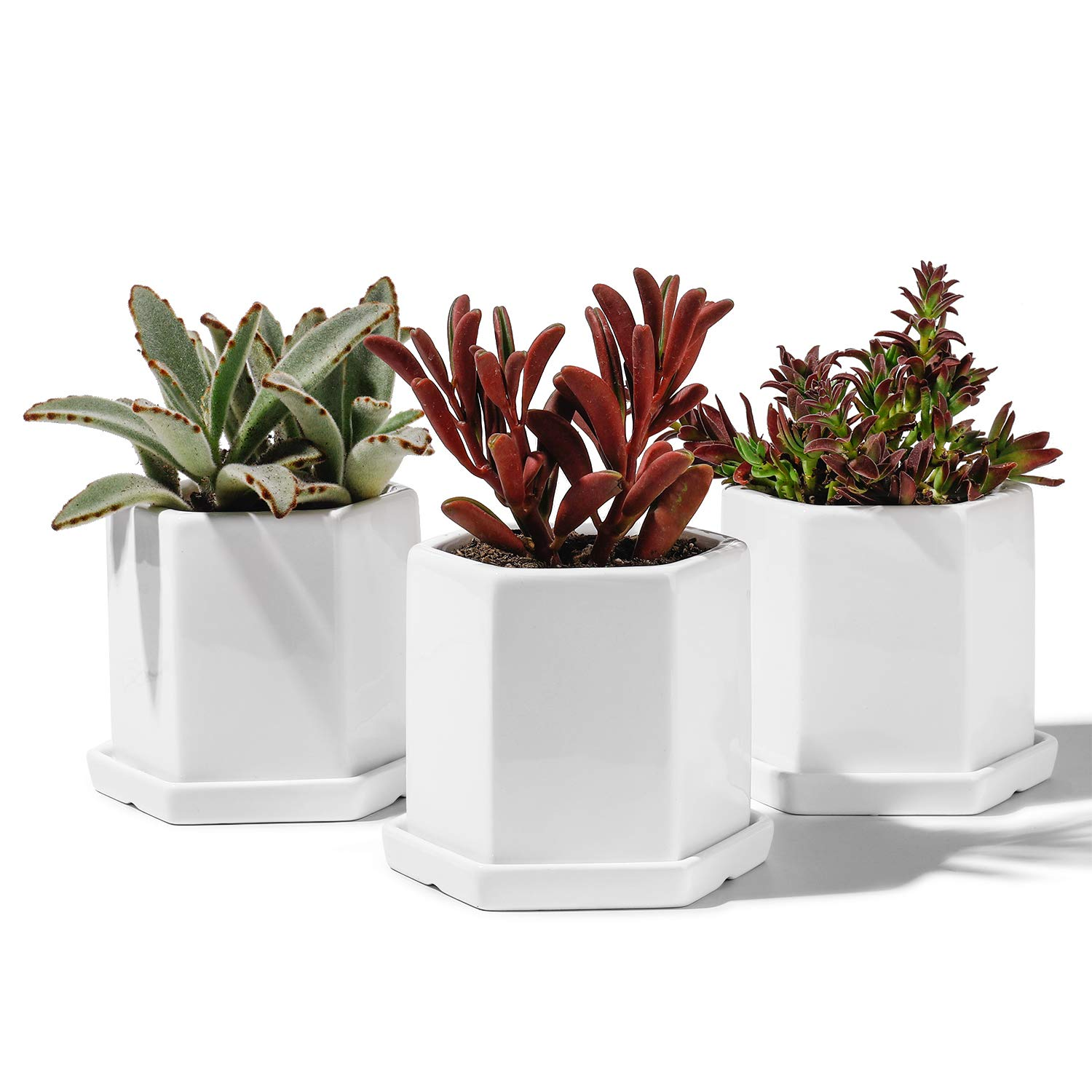 Potey Ceramic Planters Indoor with Saucers – 4.1 Succulent Plant Flower Pots Glazed Container with Drain Hole – Set of 3, Pure White, Hexagon