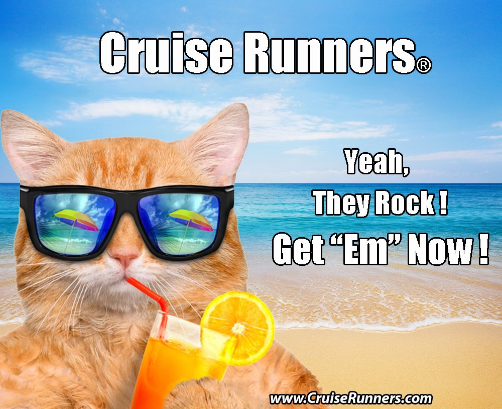Fake Shampoo & Conditioner By CRUISE RUNNERS Hidden Liquor Alcohol Flasks For Booze Cruise | Enjoy Rum Runners 4 Bottles by Cruise Runners (Image #9)