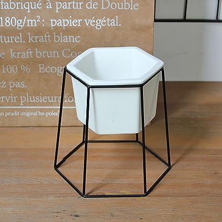 Soporte de Flores Escalera de Caracol de Hierro Retro Mini Planta Expositor Decora tu Escritorio Simple y con Estilo (hexágono) (Color : B): Amazon.es: Hogar