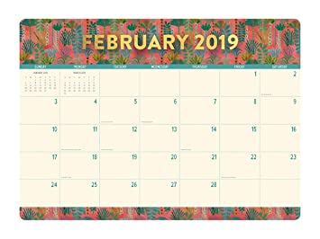 Decorated February Calendars 2019 Amazon.: Orange Circle Studio 2019 Decorative Desk Blotter