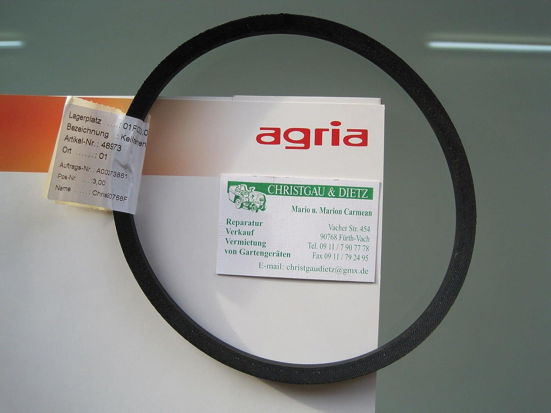 Agria 48973 400 5300 - Correa trapezoidal para cortacésped (eje único, tracción hacia atrás)