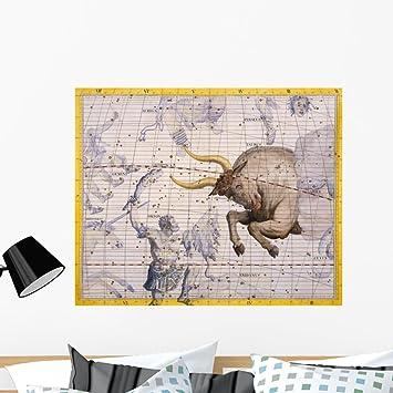 Amazon.com: wallmonkeys wm156615 la constelación de Taurus ...