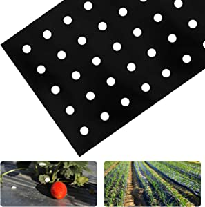 2 Pack 33 x 3 Feet Black Embossed Plastic Film with Planting Holes- 1 Mil Garden Weed Control Barrier Film Mulching Breathable Gardening Farming Landscape Sheeting for Moisture Temperature Maintaining
