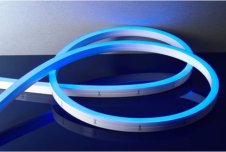 Tira sumergible flex neón ribon LED 42 W RGB 3000 K luz piscina IP68 24 V