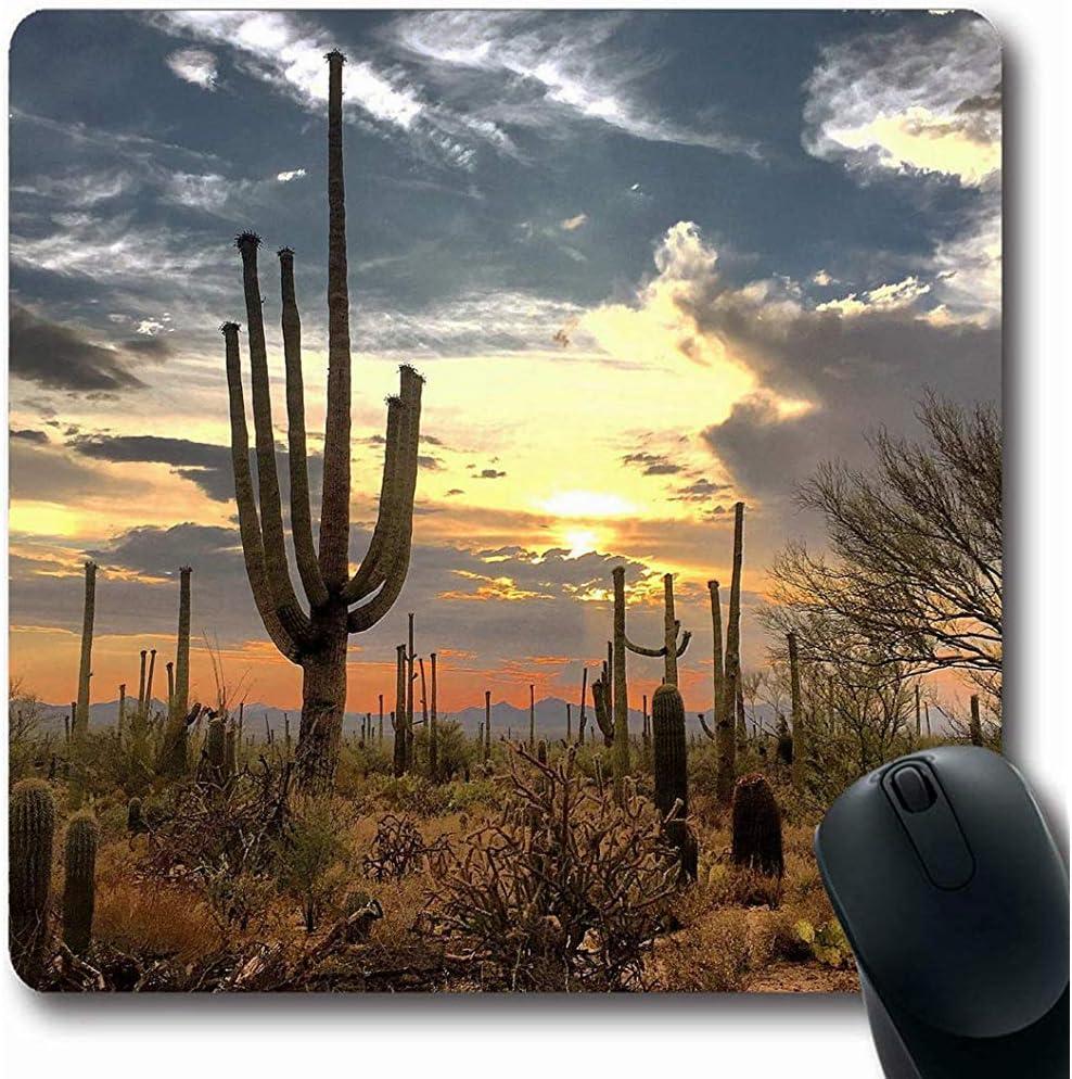 Alfombrilla de ratón Cactus Azul Arizona Desierto Parques ...