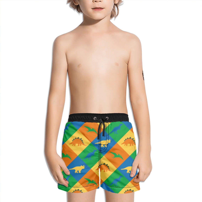 Trum Namii Boys Quick Dry Swim Trunks Dinosaur Checkered Shorts