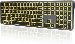 Backlit Bluetooth Keyboard for Windows & Mac OS, seenda Multi-Device Ultra Slim Rechargeable Keyboard, Backlit Wireless Keyboard for Win 8/10, Laptop, Tablet, MacBook Air/Pro, iPad, iPhone