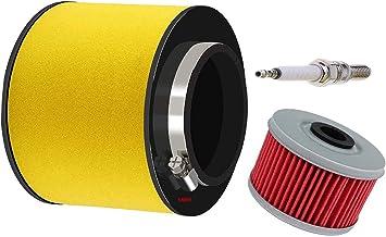 Oil Filter for Honda TRX350 FourTrax Rancher 2000 2001 2002 2003 2004 2005 2006