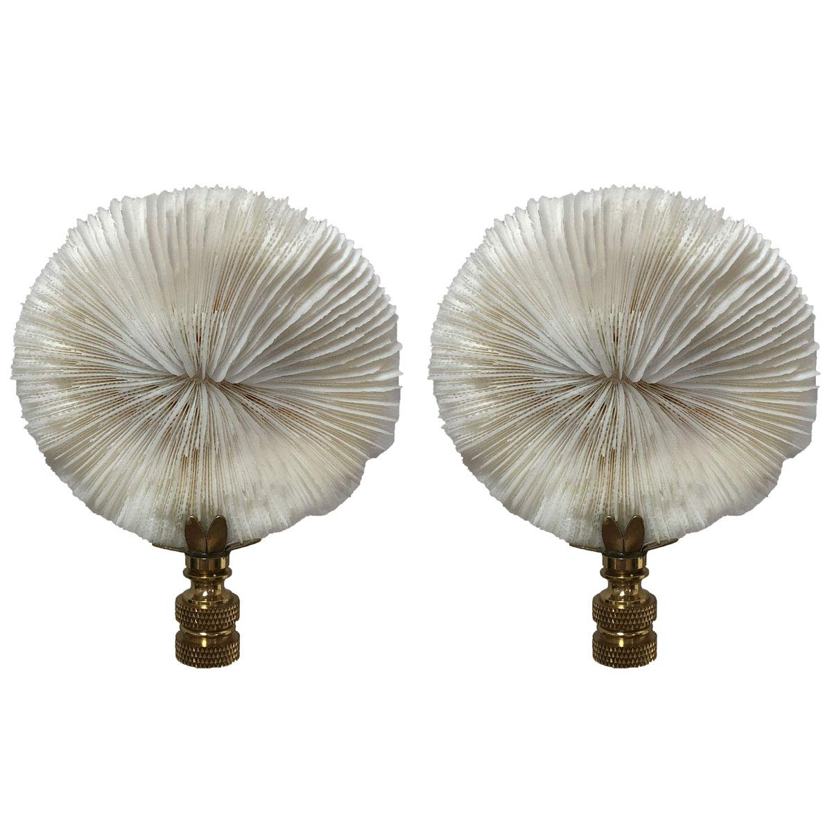 Royal Designs F-5069PB-2 Natural Coral Lamp Finial, White Mushroom Coral on Polished Brass Base, Set of 2