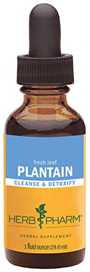 Herb Pharm Certified Organic Plantain Extract