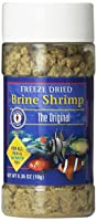 San Francisco Brine Shrimp