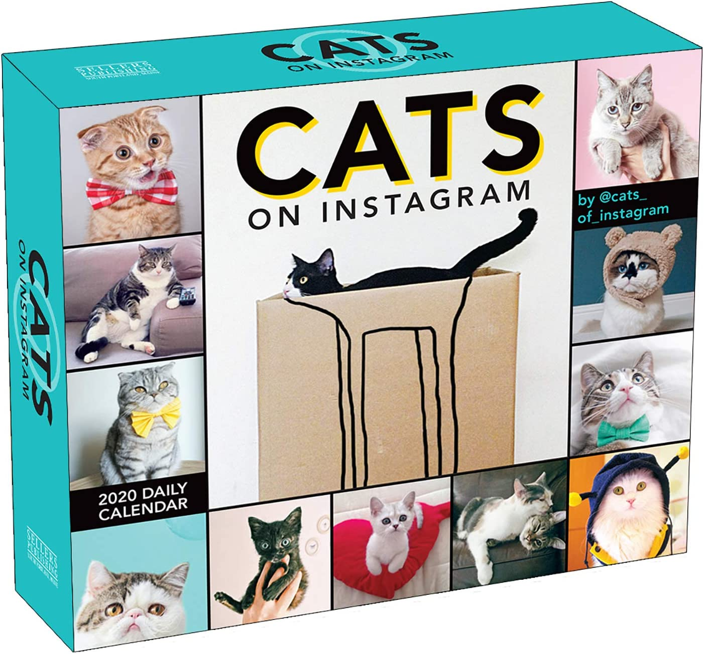 2020 Cats on Instagram Boxed Daily Calendar: By Sellers Publishing