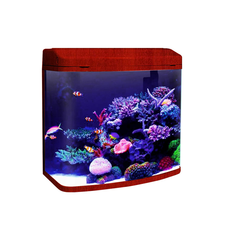 Jainsons Pet Products Minjiang Fish Aqua Buy Online In Israel At Desertcart