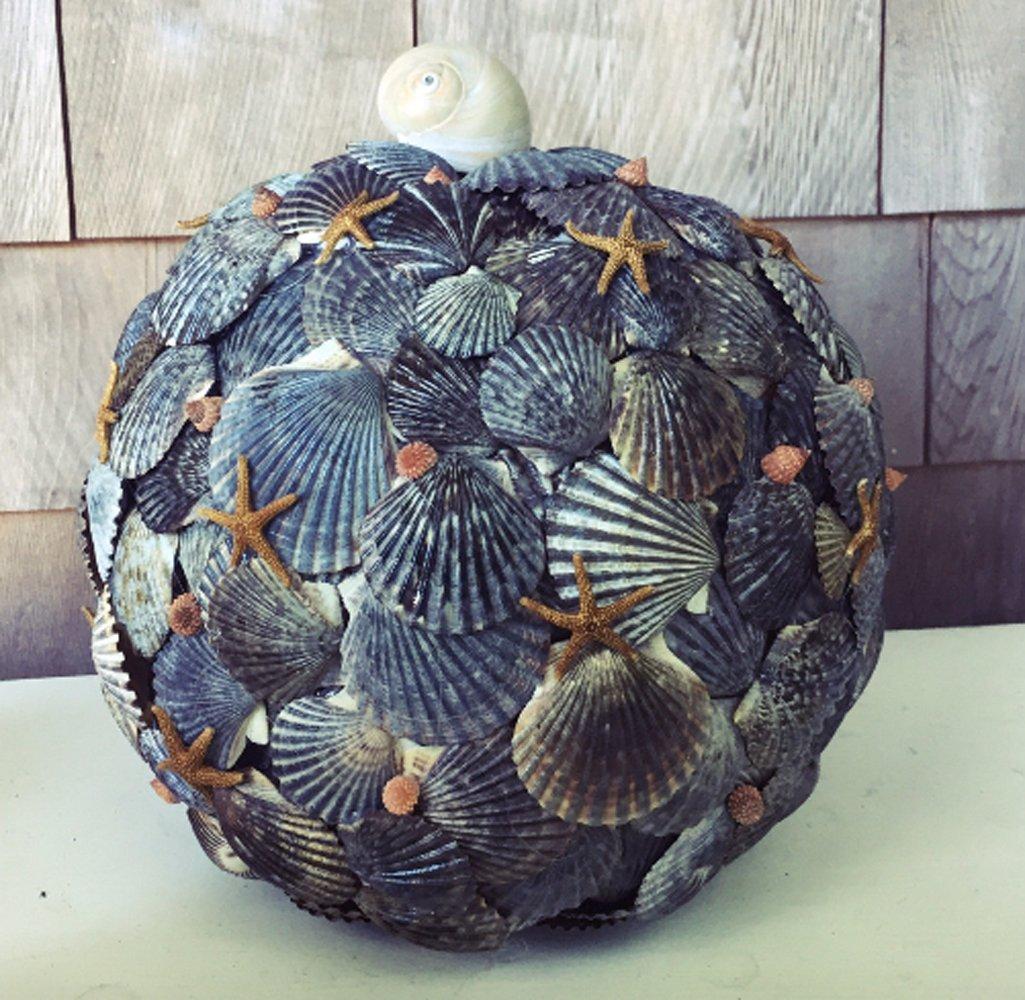 Amazon Nautical Seashell Pumpkin Beach Halloween
