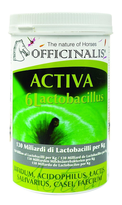 OFFICINALIS Unisexe Lactobac EQ Feed complémentaires, Multicolore, 800G Boîte