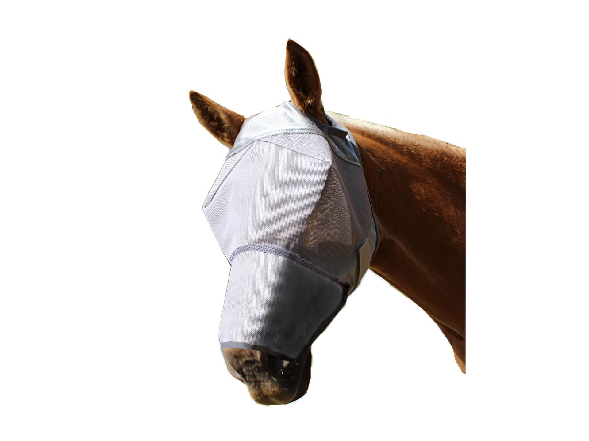 Derby Fly Mask Without Ears with Stitched Nose Cover (Large)