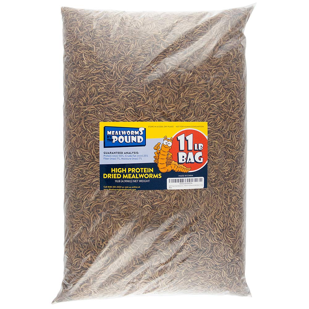 CDM product MBTP Bulk Dried Mealworms - Treats for Chickens & Wild Birds (11 Lbs) big image