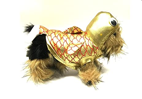 Gold Fish Small Dog Costume by Midlee (12u0026quot; ...  sc 1 st  Amazon.com : fish costume for dogs  - Germanpascual.Com