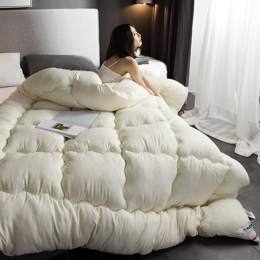 DW& HX Chaud d'hiver épais édredons double climatisation quilts-beige 220x240cm(87x94inch) QQDE