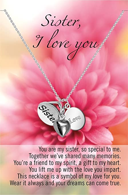 Amazon.com: Sister I Love You Necklace - 1 Pc (Zorbitz, Inc ...