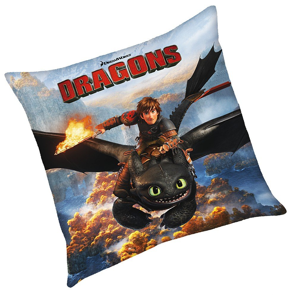 Dragons - Kissen Kinder Kuschelkissen Dekokissen Hicks 40x40cm Character World