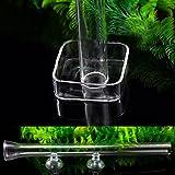 Dabixx Tubo de cristal para alimentación de camarón con ventosa para acuario, vidrio, Transparente, 300…
