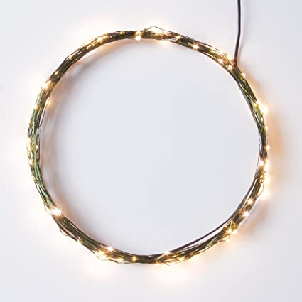 Amazon.com : RTGS Products Micro LED 100 Color Lights Plug In On ...