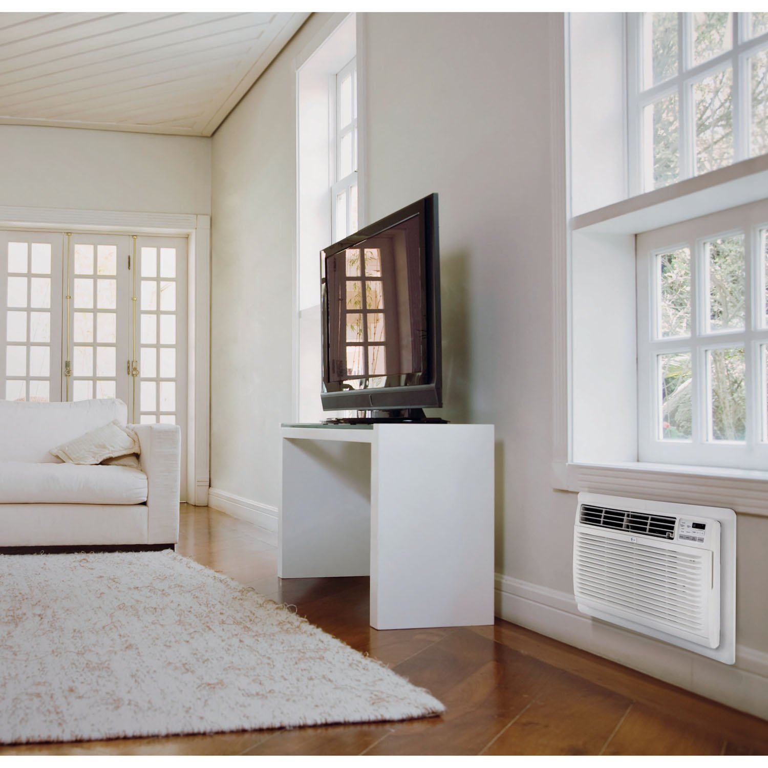 Through-the-Wall Air Conditioner with Remote Control