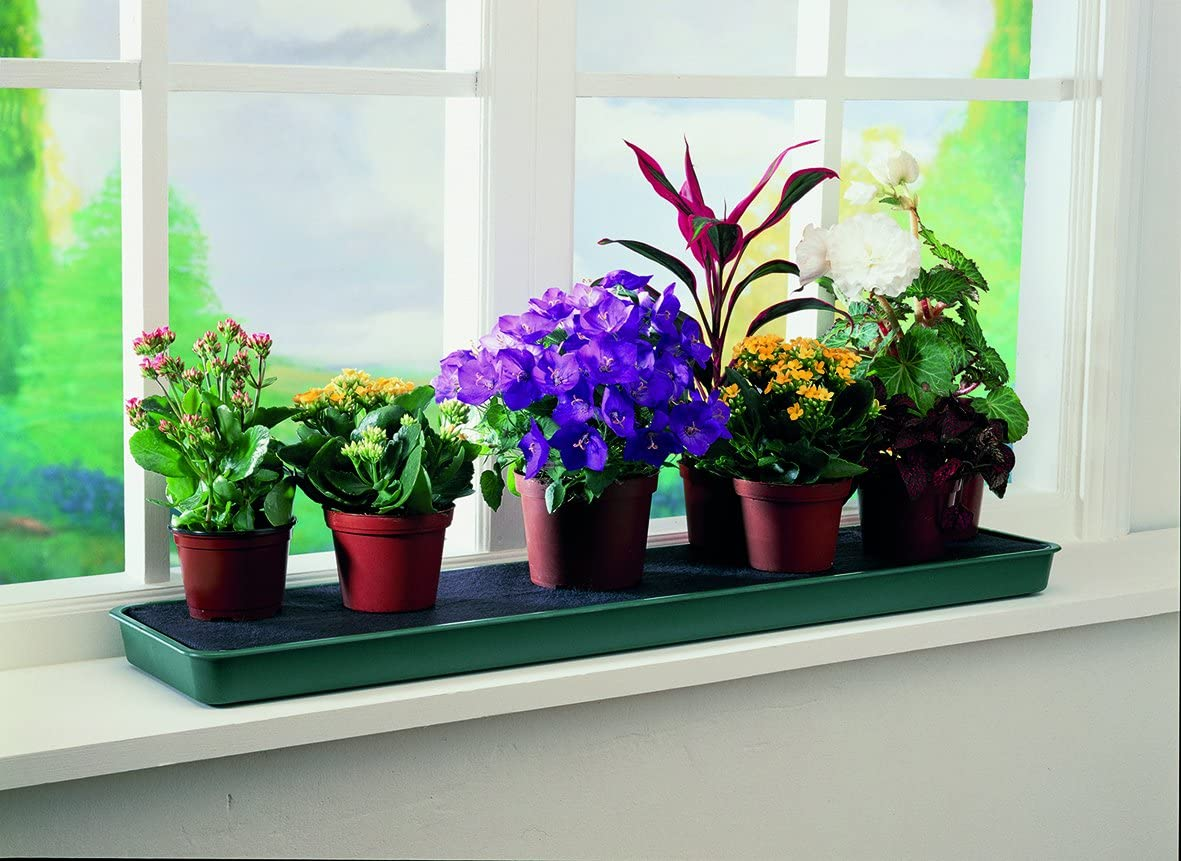 Tierra Garden GP71 Windowsill Self Watering Plant Tray
