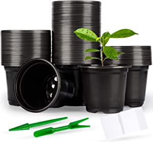 100PCS Plastic Nursery Pot 4Inch Seed Starting Pots with 100 Pcs Planting Tags and 2 Pcs Mini Garden Tools for Succulents, Seedlings, Cuttings, Transplanting, Black
