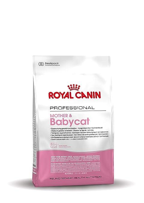 Royal Canin - Mother Babycat, 10KG