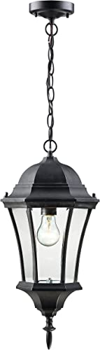 Z-Lite 522CHM-BK Wakefield Outdoor Chain Light, Aluminum Frame, Black Finish and Clear Beveled Shade of Glass Material