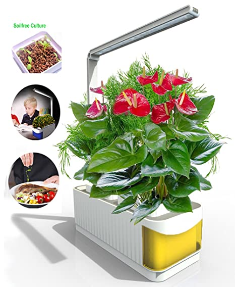 indoor smart herb gardening kit desk led grow light kit hydroponics watering growing system - Indoor Vegetable Garden Kit